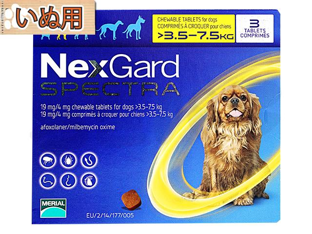 『ネクスガードスペクトラ』が今なら10%OFFで購入できます!!ノミ・ダニ対策の薬です。