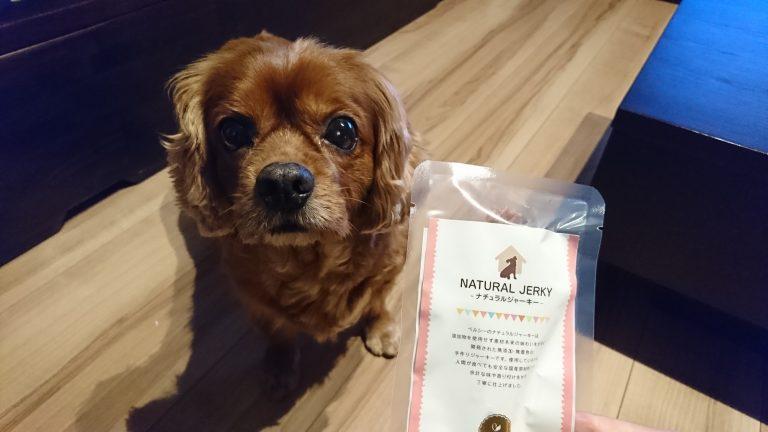 『犬用ナチュラルジャーキーセット』が届きました。天然おやつは安全・安心ですね。