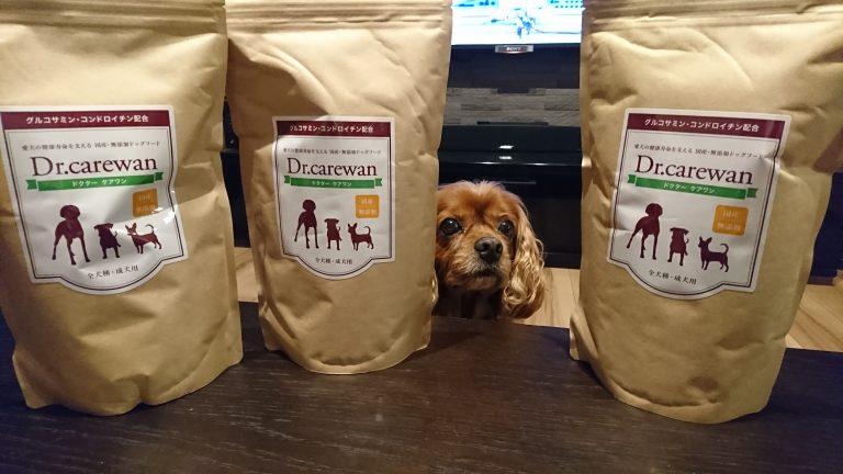 『Dr.ケアワン』国産無添加ドッグフードで愛犬の関節をケアする。