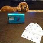犬用関節炎鎮痛剤オンシオール