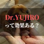 Dr.YUJIROきかない?