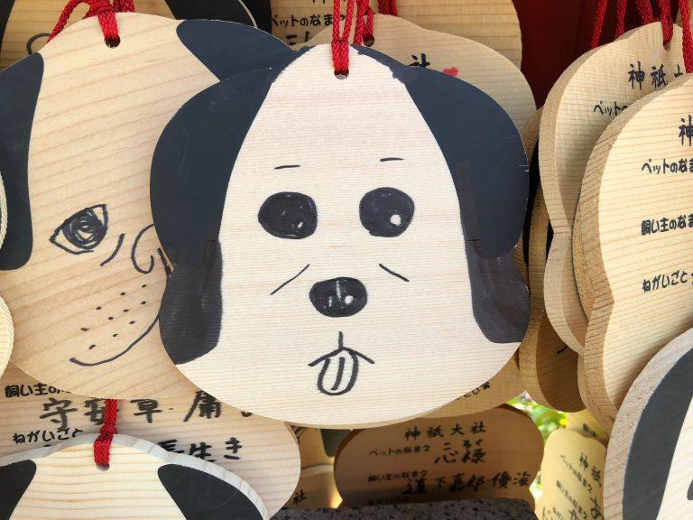犬と一緒にお参りできる神社『神祇大社』で参拝~伊豆旅行②~