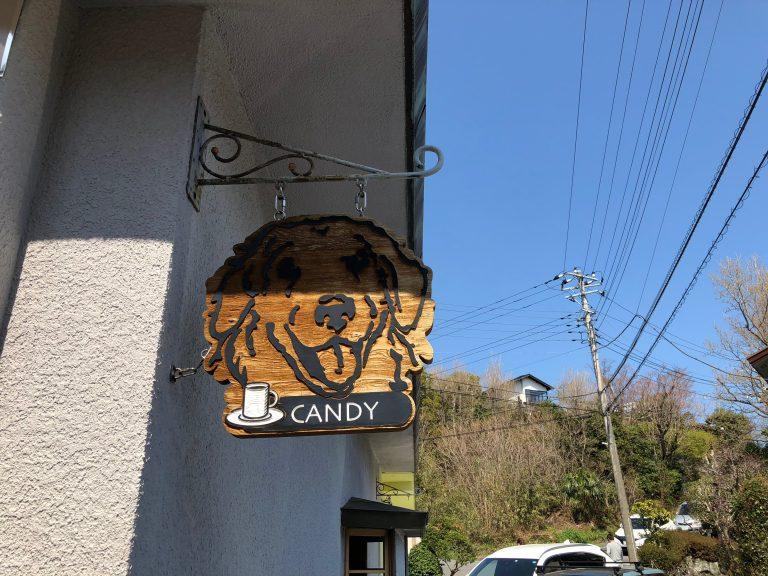犬OKのドッグカフェ『CafeCANDY(カフェキャンディ)』~伊豆旅行③~