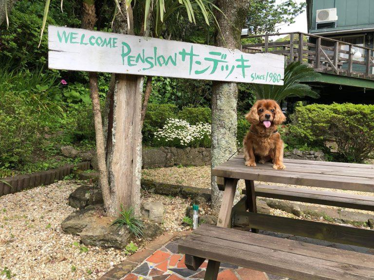 犬OKペンション『サンデッキ』に泊まる!!-千葉県鴨川市-