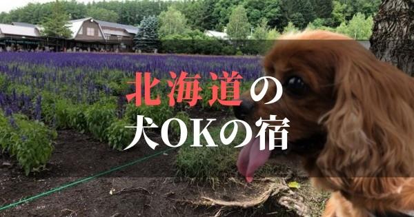 ペットOK!犬と泊まれる北海道のおすすめの宿 | 温泉やコテージも良し!!