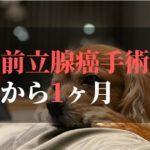 愛犬コジロウ前立腺癌摘出手術から1ヶ月【克服の章】